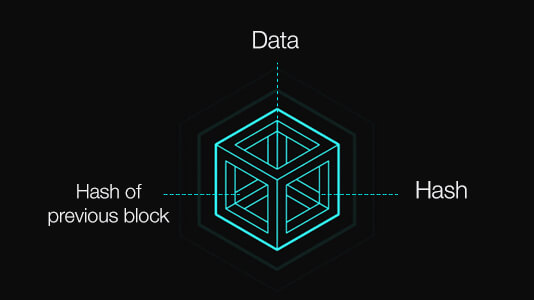 Components of a Block in a Blockchain