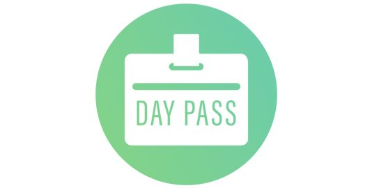lambdatest days pass