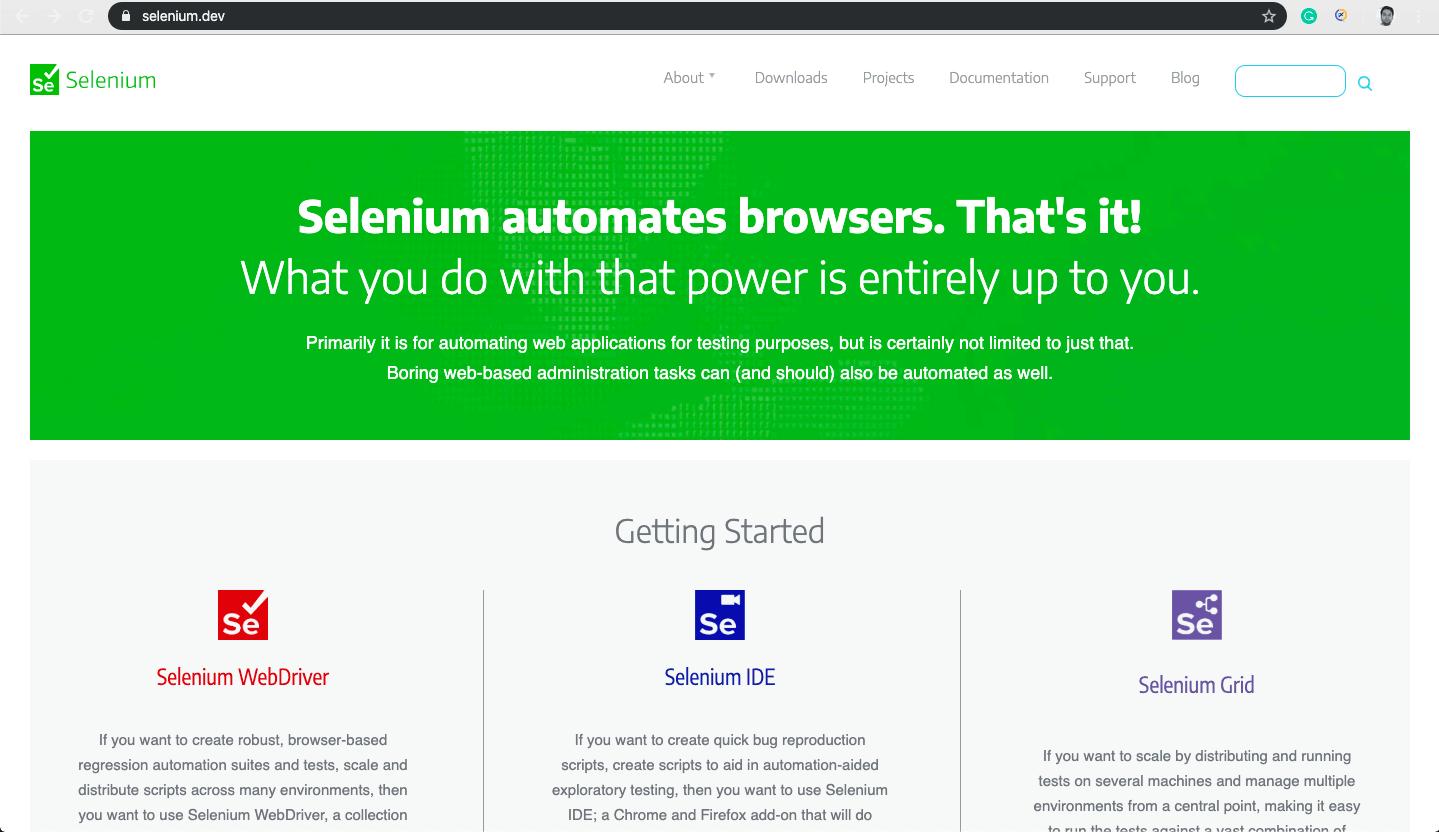 download chromeDriver in Selenium