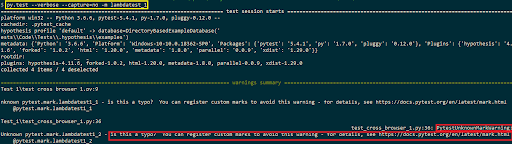 python-test-script