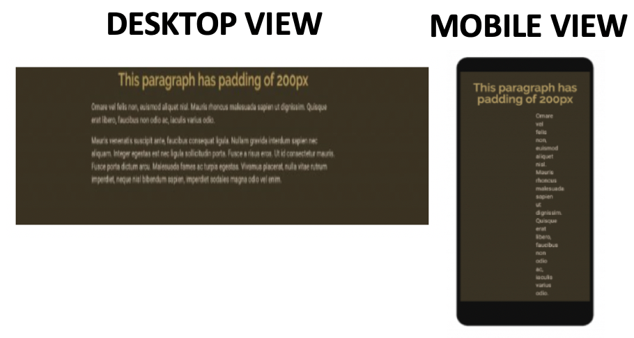 Mobile Website View