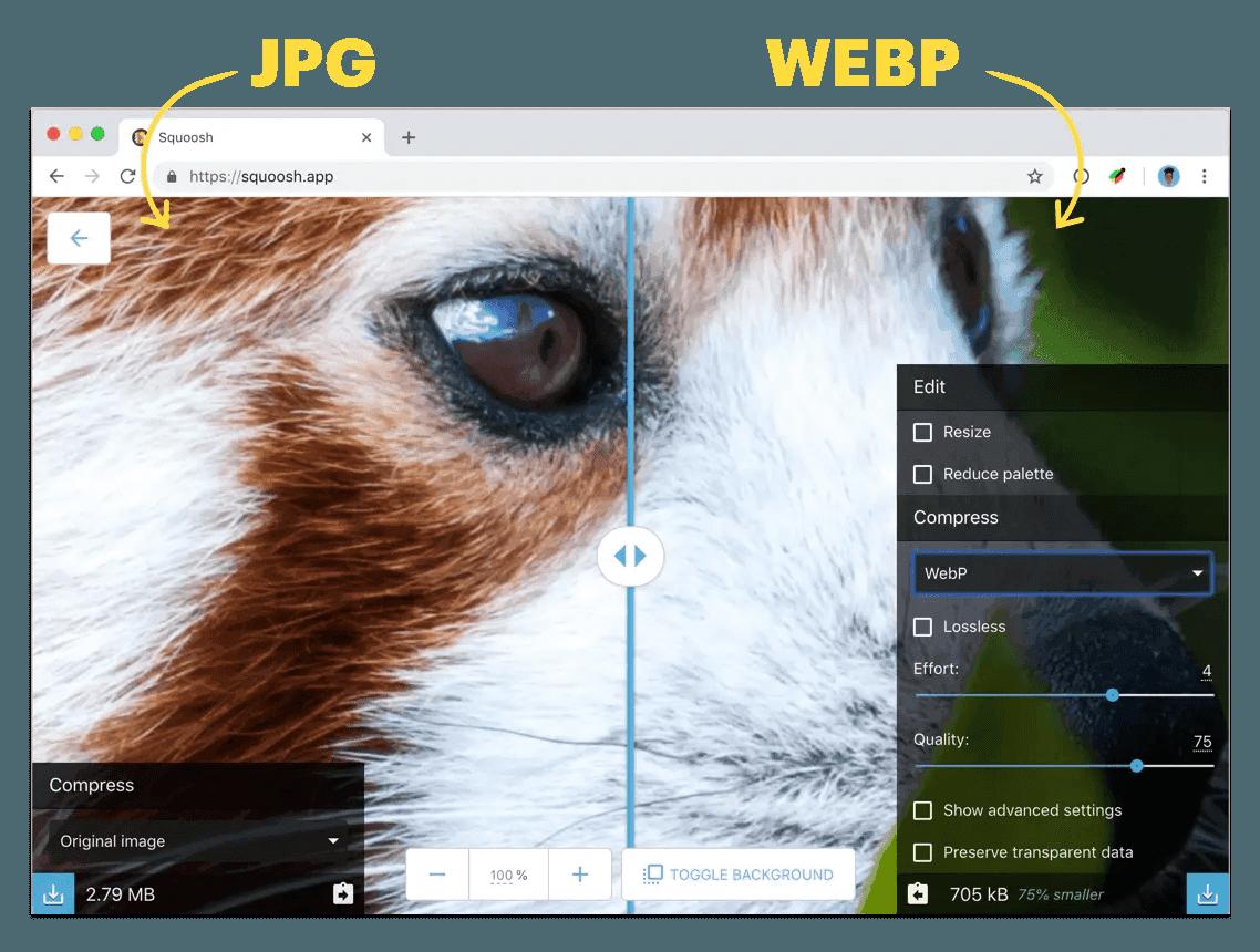 WebP & HDR Video Playback