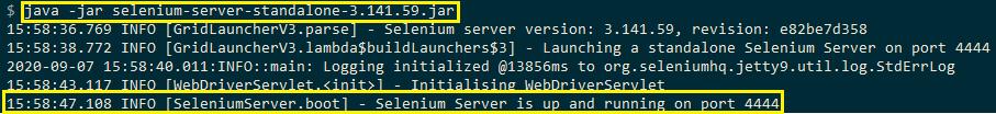 Selenium server standalone