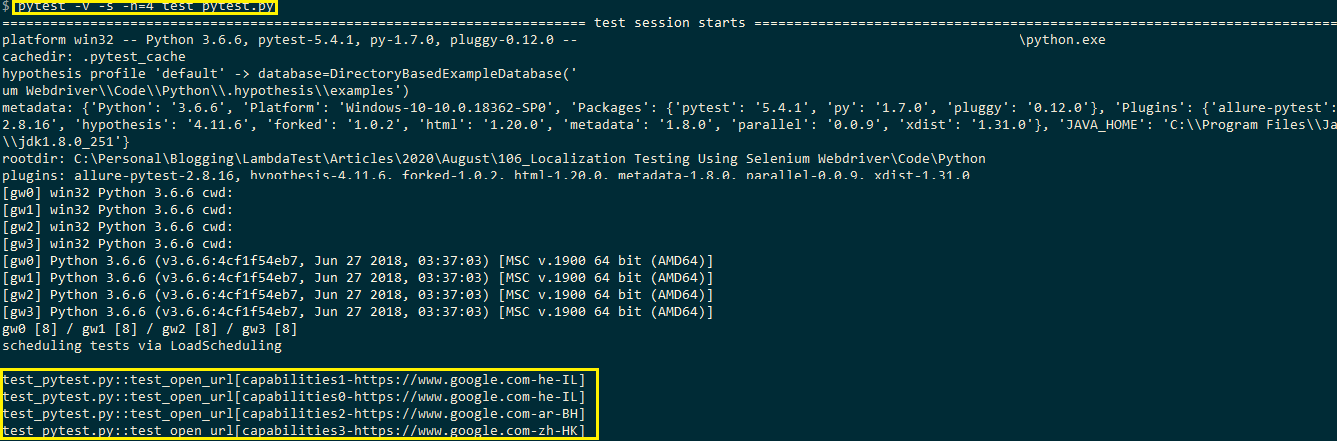 local test execution logs