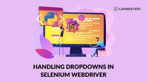 Handle Dropdowns In Selenium WebDriver using Python
